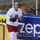 Obrázek #5, Zepter - partner mistrovství světa v ledním hokeji